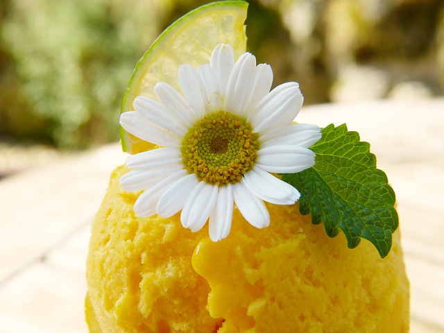 mango zmrzlina