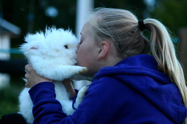 polibek s králíčkem